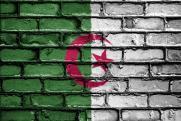Более 1 млн человек вышли на демонстрацию в Алжире