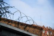Мария Бутина проведет 1,5 года в американской тюрьме