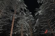 Уральский исследователь обнаружил над перевалом Дятлова «огненные шары»