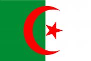 Конституционный совет Алжира утвердил отставку президента
