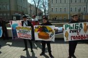 Жители Иркутска пожалуются Чайке и Бастрыкину на «оборотней в погонах». Горожане вышли на улицы