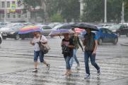 «Выложенный там прогноз погоды сбывается всего на 50 %». Каким сайтам погоды доверяют  профессиональные метеорологи