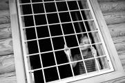 «Раз у властей нет денег на сирот, давайте закроем детские дома на Колыме»
