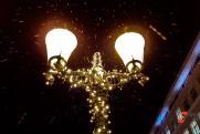 Фонарями в димитровградском парке Духовности заинтересовалось УФСБ