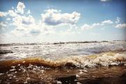 «У туристов циститы, отиты, гепатиты – мы это наблюдаем каждое лето в Крыму»