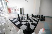 Журналист «ФедералПресс» выиграл в шахматы