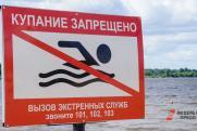 Озеро в Ленинградской области отравили опасным химикатом