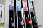 «В вопросах цен на топливо правительство старается держать руку на пульсе»