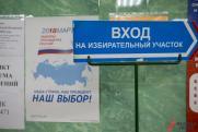Касамара настаивает на изменении избирательного законодательства в России