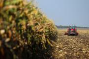 Проблемный тракторный завод во Владимире признали банкротом