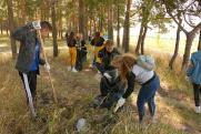 Саратовский НПЗ организовал эко-десант в сосновом бору