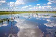 Регионы должны сообщить об опасных в паводковый период зонах до 15 октября