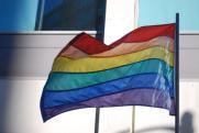 ЛГБТ-флаг в окне квартиры в петербургском ЖК оказался обычной радугой, которую повесили дети