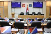 В Приморском крае сняли с рассмотрения законопроект о прямых выборах глав городов