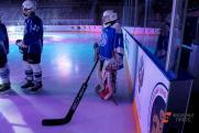 Самарскую федерацию хоккея удалили со льда навсегда