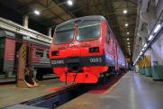 В Перми начнут ремонтировать скоростные «Ласточки»