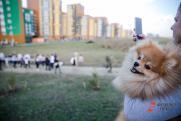Где будет жить хорошо. Генплан Екатеринбурга выделил наиболее перспективные микрорайоны