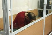 ОНК опровергла информацию о попытке суицида историка Соколова на следственном эксперименте