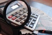 «Налог на самозанятых в отдельных регионах нарушает принцип единого экономического пространства»