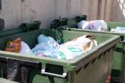 «Игнорировать этот факт нельзя!» В Самарской области высокие нормативы могу привести к мусорному коллапсу?