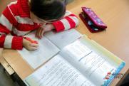 Земские учителя начнут работать в селах Оренбуржья с 2020 года