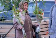 Самозанятым россиянам могут предоставить особые условия по пенсиям