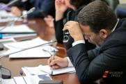 «Предоставьте поименный список предателей!» Тольяттинские депутаты недовольны тайным голосованием