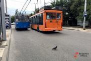 Выборы общественному транспорту не помогут. Российский курс на уничтожение