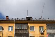 Калининградец получил в наследство квартиру с мумией пожилого мужчины