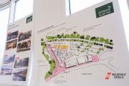 Коронавирус помешает компании «Русал» провести в срок международный конкурс на концепцию центрального парка Красноярска