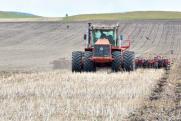 «Настоящий аграрный прорыв». В Челябинской области началась посевная и появились новые меры поддержки селян