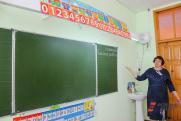 Хаматова предложила премировать не только врачей, но и учителей