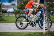 Размещение пунктов велопроката в красноярском Татышев-парке определят по конкурсу