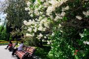 Учителя екатеринбургских школ поддержали реконструкцию парка XXII Партсъезда