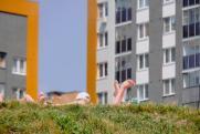 Истина в воде. Уральцы массово скупают пломбир и бьются за место на пляжах