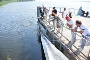 Сызранские нефтяники выпустили в Волгу свыше сотни тысяч мальков ценной рыбы