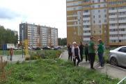 Трупный запах и мухи. Жители пригорода Челябинска выступили против птицефабрики Косилова