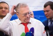Парадокс ЛДПР: губернаторы есть, поддержки – нет
