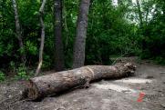 Гора Куштау в Башкирии официально признана памятником природы