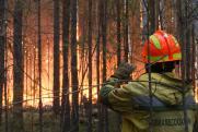 В Оренбургской области пожары приближаются к населенным пунктам
