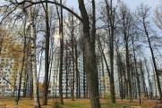 Власти Перми проинспектировали строительство парка в районе ЖК «Гулливер»
