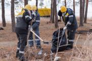 Саратовские нефтяники очистили лес от мусора