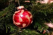 Ирина Гехт о новогодних елках: лишать детей праздника неправильно