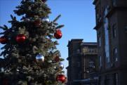 На «Красном Октябре» нарядили новогоднюю елку