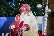 Россияне рассказали, что попросят у Деда Мороза