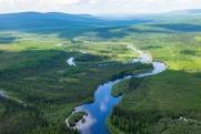 «Роснефть» помогла в изучении пострадавших от пожаров сибирских лесов