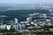 Общественник о застройке лесопарковой зоны в Иркутске: «Боюсь, что там появятся многоэтажки»