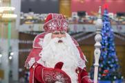 Сколько стоит визит Дед Мороза: подпольный Новый год и нелегальные волшебники Приволжья