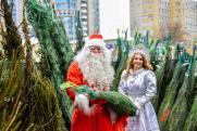 Новый год и госзакупки: с какими праздничными тратами уходит в 2021-й Челябинск