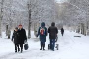MediaGuber СЗФО: Ведерникова просят заняться медициной, а Цыбульского – привести Архангельск в порядок